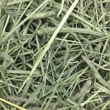 timothy hay hamster bedding topper