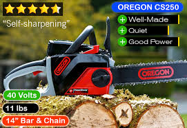 best chainsaw. oregon powernow cs250 | best chainsaw : battery (runner-up) 0
