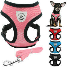 <b>Шлейки</b> для собак - огромный выбор по лучшим ценам | eBay
