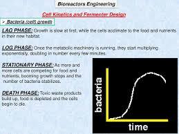 Bioreactor Design Ppt Bioreactors Engineering Ppt Download