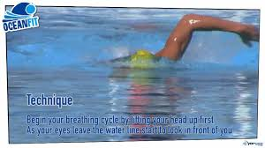 oceanfit how to sight forward while swimming ocean swimming
