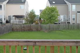 Small Yards Big Designs  DIYGood Trees For Backyard