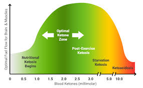 46 Veritable Ketone Levels Chart Keto Diet