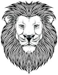lion coloring page lion coloring pages mountain lion coloring pages coloring page lion free printable mountain