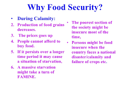 food security in essay essay on politics in short essay on the criminalization in short essay on the criminalization in · food security