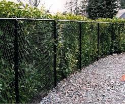 black vinyl privacy fence. Chain Link Fence Privacy Ideas Medium Size Of Enchanting Fencing Black Vinyl