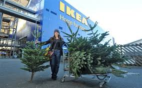 An Ikea store has slashed the price of its Christmas trees to just 1,