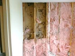 how to get rid of black mold in basement how to get rid of mold inside