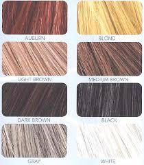 28 Albums Of Xfusion Hair Fibers Colors Explore Thousands