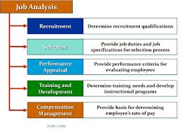 Job Analysis BBA Study Notes Job Analysis A Basic Understanding BUSINESS 11