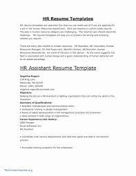 Construction Resume Examples Professional Construction Resume Sample