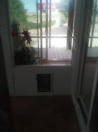 hale wall pet door