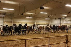 nebraska cattlemen s classic first draft horse feed team race a deanna