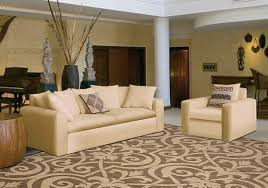 i want a transitional rug versatile stylish compelling