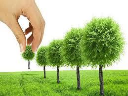 Решение экологических проблем пути и способы Пути решения проблемы