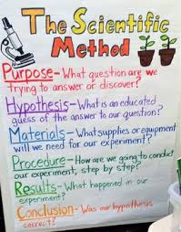 Scientific Chart The Scientific Method Outline Anchor Chart