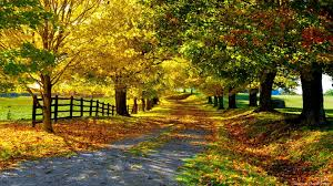 free nature wallpaper for fall. Inside Free Nature Wallpaper For Fall