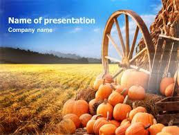 Pumpkin Field Powerpoint Template Backgrounds 00474