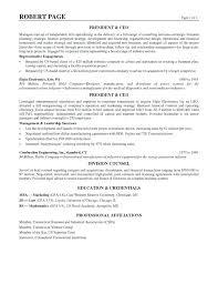 resume with profile statement resume profiles penza poisk