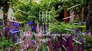 garden centre ireland caragh nurseries