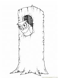 Small Picture Owl in tree Coloring Page Free Owl Coloring Pages
