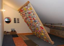 home climbing wall google search