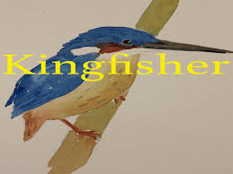 how to paint a kingfisher in watercolour watercolor bird tutorial beak