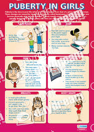Stages Of Puberty In Males Chart Puberty In Girls Poster