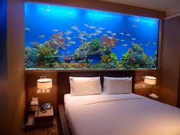 fishtank bed head - looks amazing