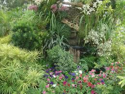 Tropical Flower Garden Landscape Designs Native Home Garden Design Tropical Gardens Pictures