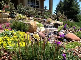 Small Picture Waterwise Landscaping Audubon Rockies