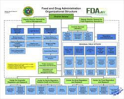 Organizational Chart Of Food Industry 50 Studious Distributor Organizational Chart