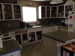 general finishes milk paint kitchen cabinets. kitchen cabinets makeover with milk paint, cabinets, design, painting general finishes paint i