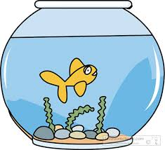 fish bowl clipart. Modren Clipart Fish Clipart To Bowl S