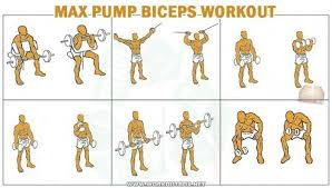 Biceps Exercise Chart Biceps Workout Routine To Pump And Shape Your Biceps Get