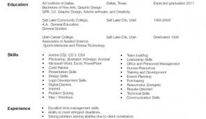 How To Write A Resume Online Resume Template
