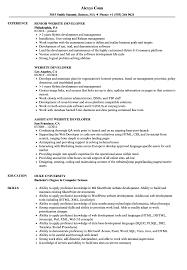 Website Management Resume Website Developer Resume Samples Velvet Jobs 24