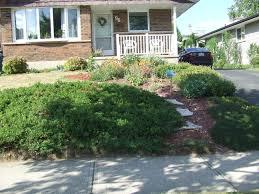 Garden Centre Kitchener Kitchener In Bloom Carolyn R Wilker Blog