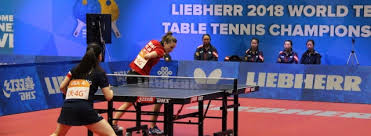 usa table tennis players on the ittf team liebherr world 2018 championships
