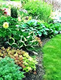 designing a shade garden shade garden plan garden plan garden plan full image for small shade