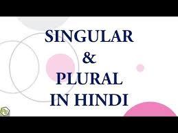 Singular Plural In Hindi Youtube