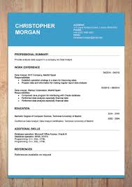 Resum Form Cv Resume Templates Examples Doc Word Download