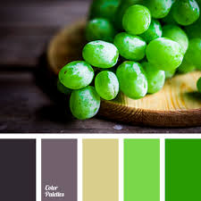Purple Green Green And Purple Color Palette Ideas