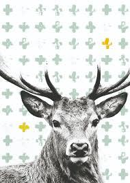 Nieuwe Behang En Postercollectie Van Stapelgoed Home Comfort Press