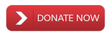 Image result for donate online to charity icon