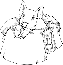 Small Picture Coloring Page Pig animal coloring pages 18