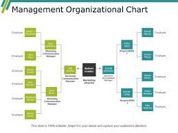 Management Organizational Chart Ppt Powerpoint Presentation