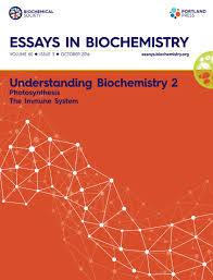 understanding biochemistry essays in biochemistry photosynthesis