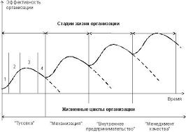Реферат Жизненный цикл организации ru Как правило специалисты несмотря на продолжающиеся дискуссии сходятся в том что полный жизненный цикл организации обязательно включает следующие стадии