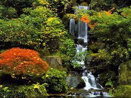 Resultado de imagem para jardins com cachoeiras